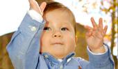 Baby ASL