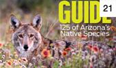 Wildlife Guide