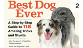 Tricks for the Best Dog Ever