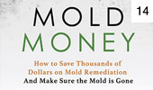 Mold Money